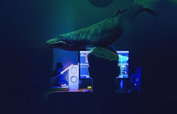 Jovem detido em Ibiúna é suspeito de atuar em jogo da baleia azul
