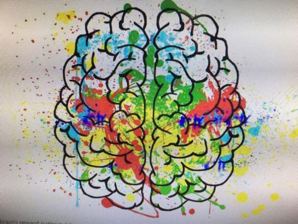Cotia participa da Semana Nacional do Cérebro com a Plataforma Life