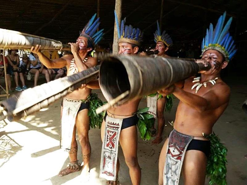 Amazônia: Descubra as belezas da floresta mais comentada do mundo