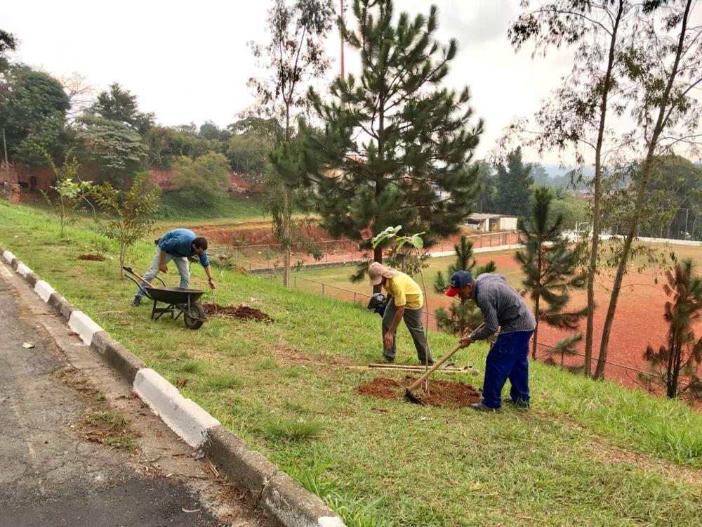 Nesta semana, Programa Cotia +Verde passa por diversos bairros