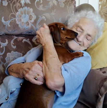 Encontro entre idosa com alzheimer e cachorro emociona internautas
